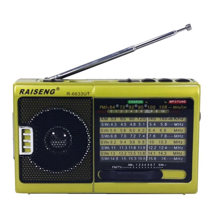 رادیو RAISENG R-6633UT